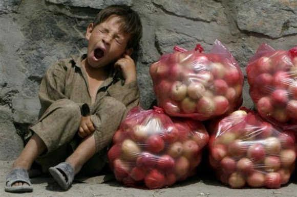 child-labor3